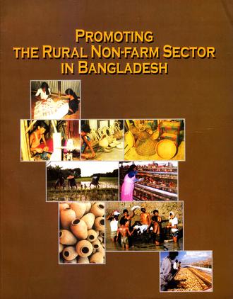 the rural non farm economy